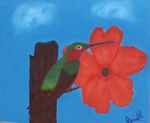Abu Ali Abdur'Rahman - Hummingbird and Hibiscus (pastel on handkerchief)